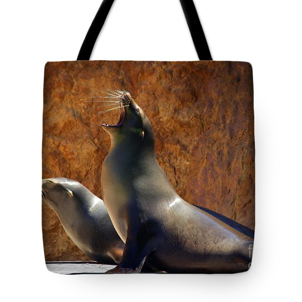 Sea Lions Tote Bag by Carlos Caetano