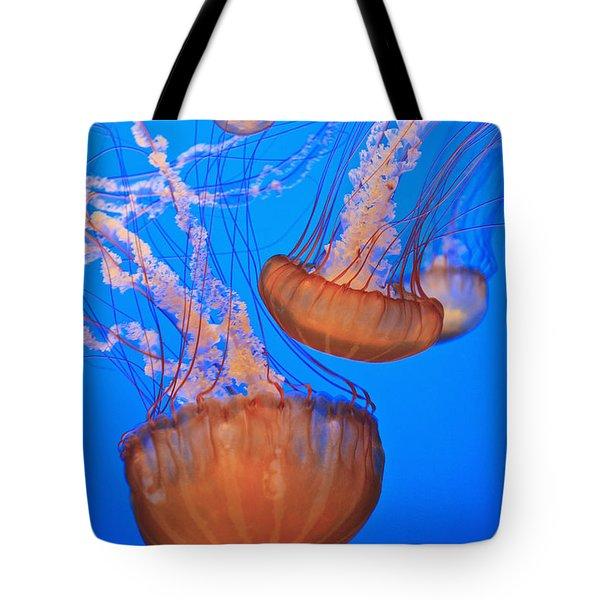 Sea Nettles Chrysaora Fuscescens In Tote Bag by Stuart Westmorland