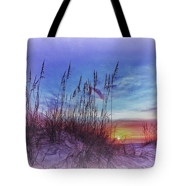 Sea Oats 5 Tote Bag by Skip Nall