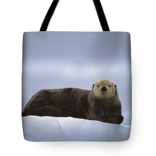 Sea Otter Enhydra Lutris Male Hauled Tote Bag by Suzi Eszterhas