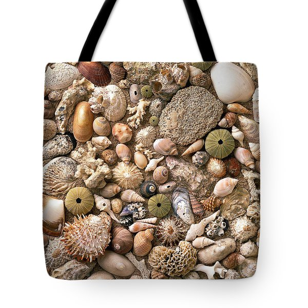 Sea Shells Tote Bag by Mauro Celotti