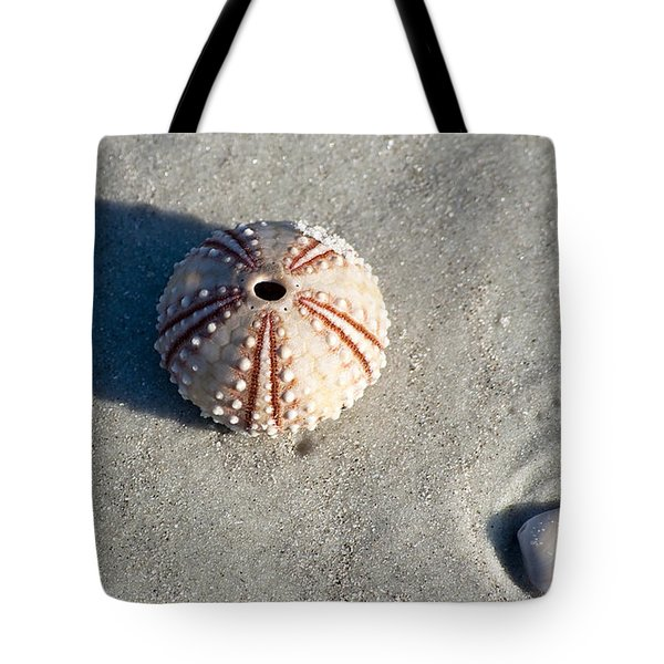 Sea Urchin And Shell Tote Bag by Kenneth Albin