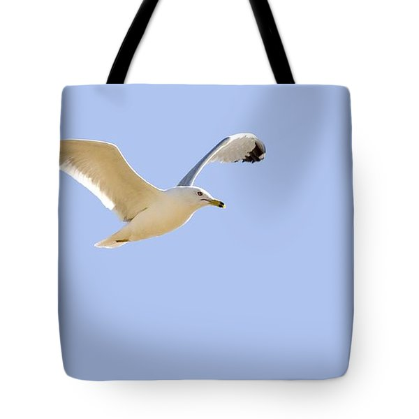 Seagull In Flight Tote Bag by Don Hammond