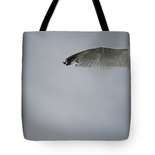 Seagull Tote Bag by Keith Levit