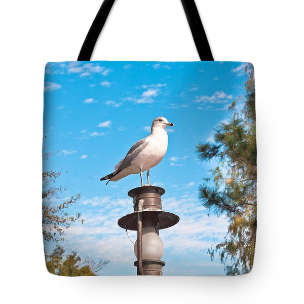 Seagull Tote Bag by Tom Gowanlock