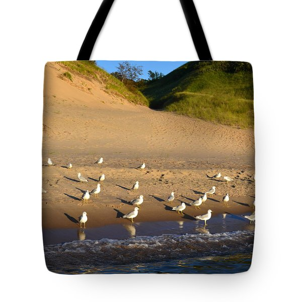 Seagulls at the Bowl Tote Bag by Michelle Calkins