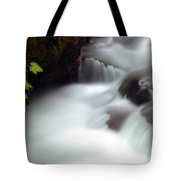 Seasons Rush By Tote Bag by Mike  Dawson