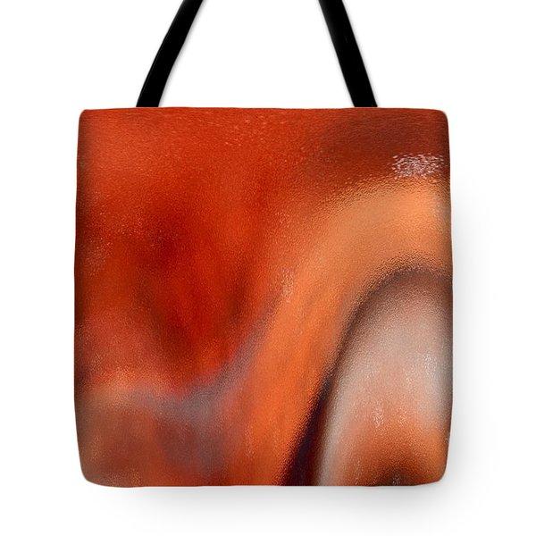 Secrets Tote Bag by Gwyn Newcombe