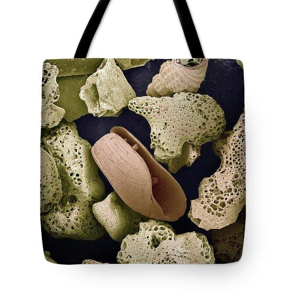 Sem Close-up View Of Foraminiferans Tote Bag by Albert Lleal