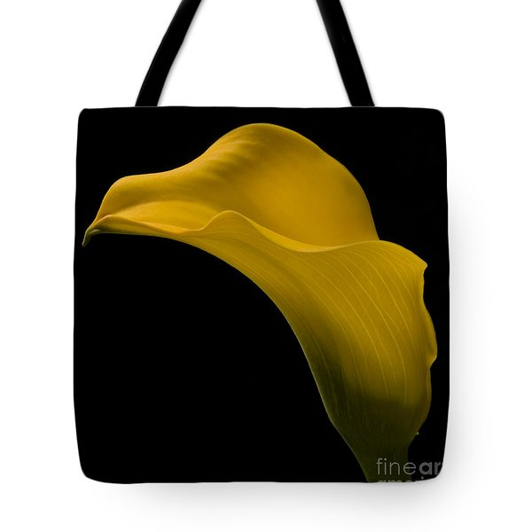 Sensuous Curves Tote Bag by Susan Candelario