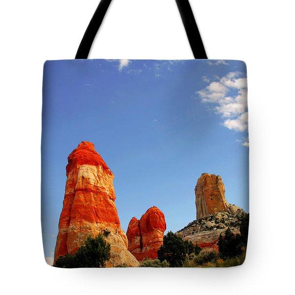 Sensuous Sandstone Tote Bag by Christine Till