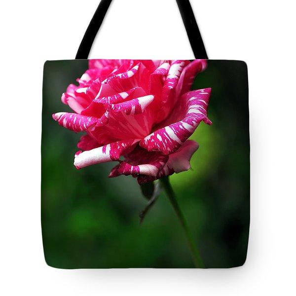 Sexy Rexy Rose Tote Bag by Kaye Menner