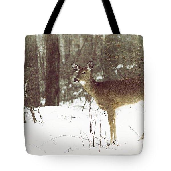She Sees You Tote Bag by Karol Livote