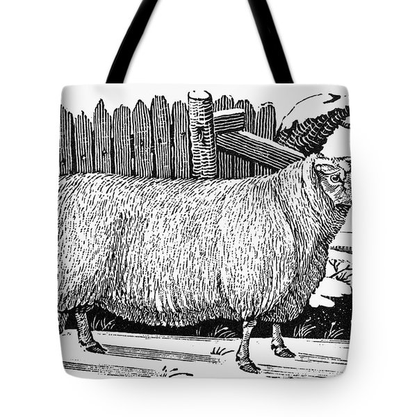 Sheep, 1788 Tote Bag by Granger