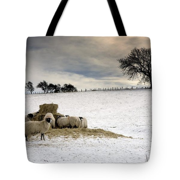 Sheep In Field Of Snow, Northumberland Tote Bag by John Short