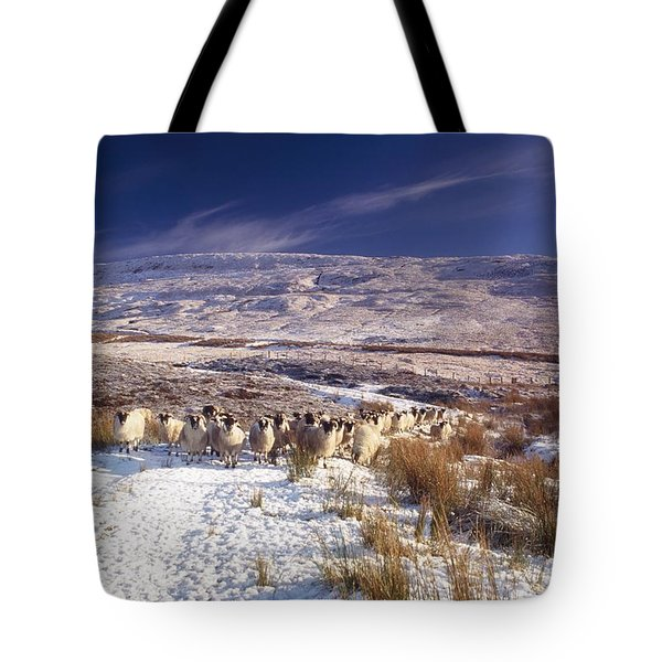 Sheep In Snow, Glenshane, Co Derry Tote Bag by The Irish Image Collection