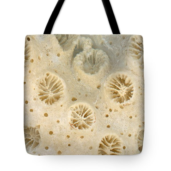 Shell - Conchology - Coral Tote Bag by Mike Savad