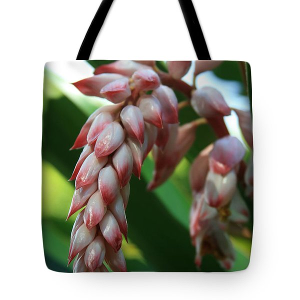 Shell Ginger Alpinia zerumbet Tropical Flowers of Hawaii Tote Bag by Sharon Mau
