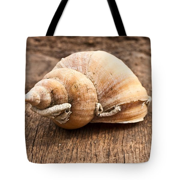 Shell Tote Bag by Tom Gowanlock