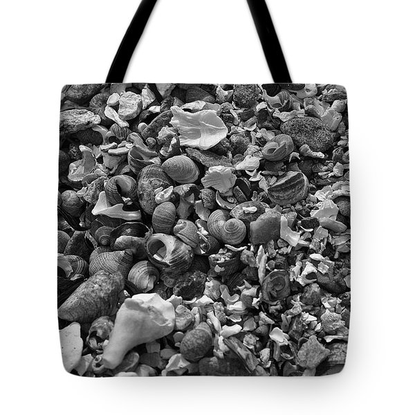 Shells Iv Tote Bag by David Rucker