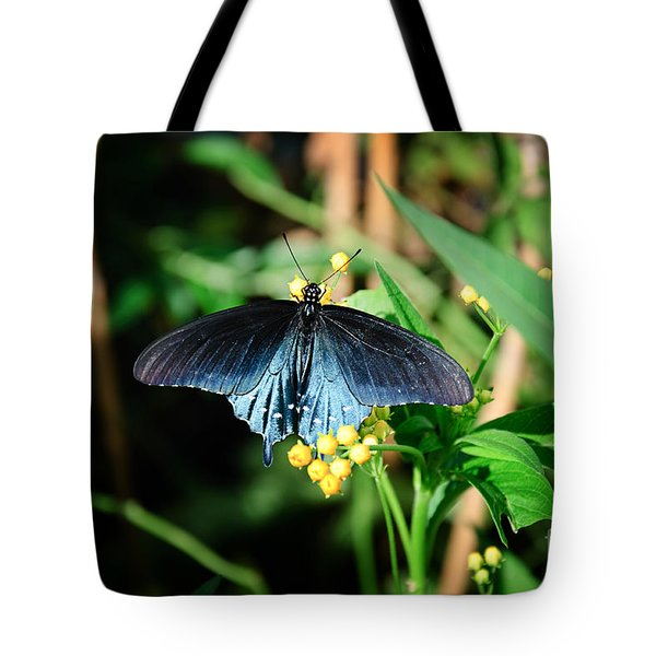 Shimmering Beauty Tote Bag by Andee Design