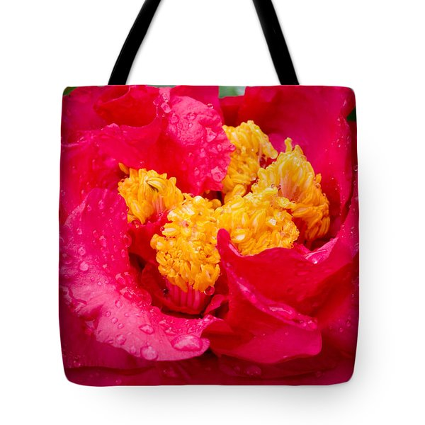 Show Off Tote Bag by Rich Franco