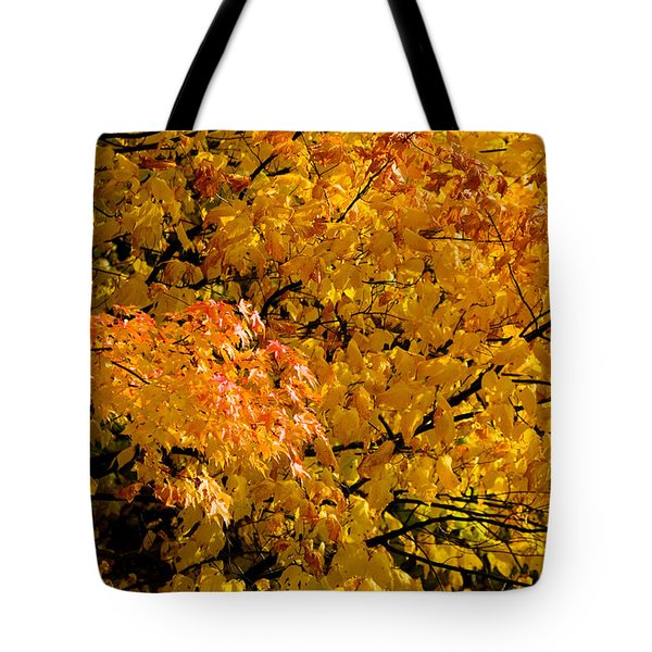 Showing Off Tote Bag by Rich Franco
