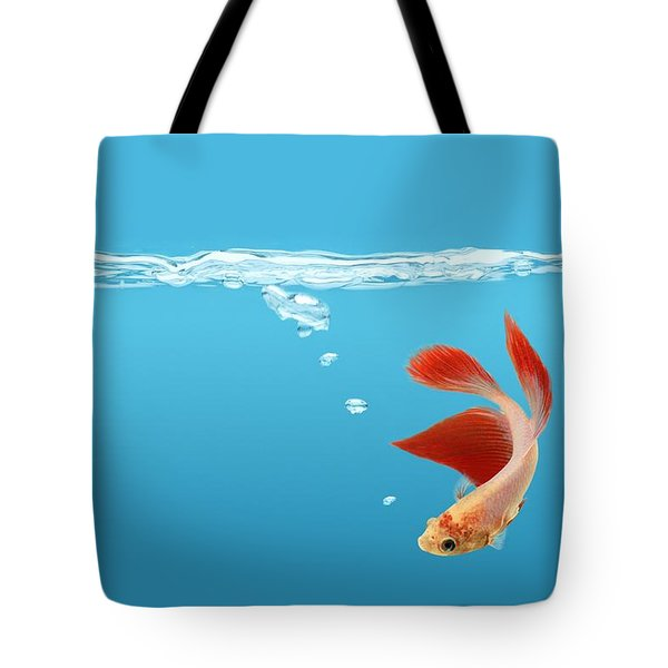 Siamese Fighting Fish Betta Splendens Tote Bag by Don Hammond