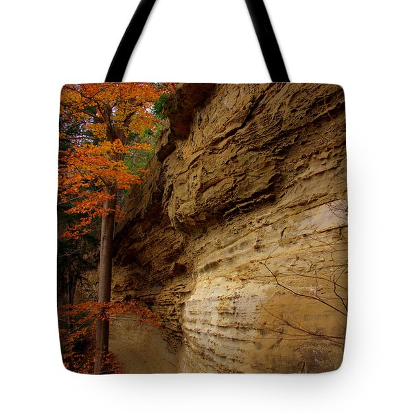 Side Winder Tote Bag by Ed Smith