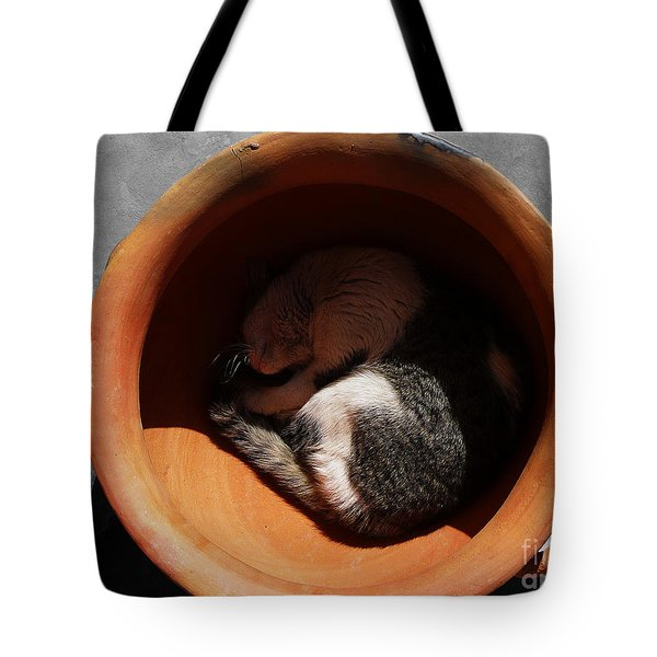 Siesta 2 Tote Bag by Xueling Zou