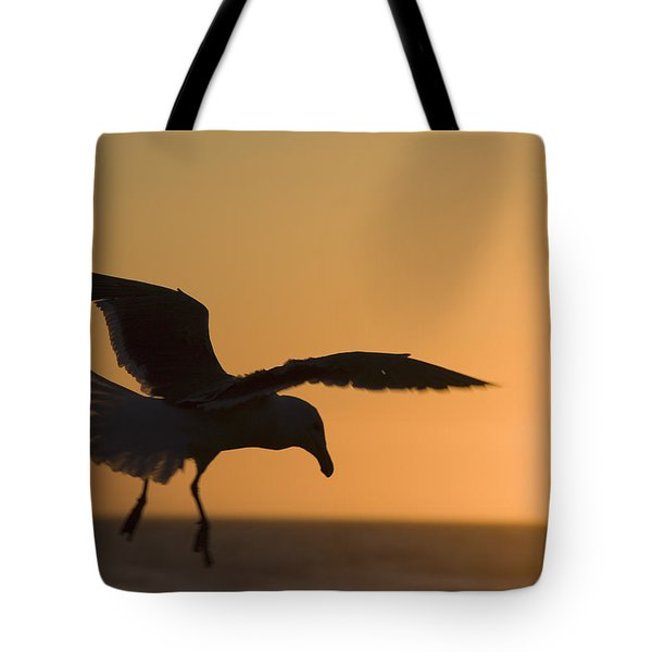 Silhouette Of A Seagull In Flight At Tote Bag by Michael Interisano
