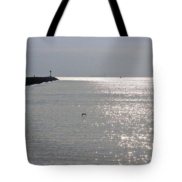 Silver Tote Bag by Heidi Smith
