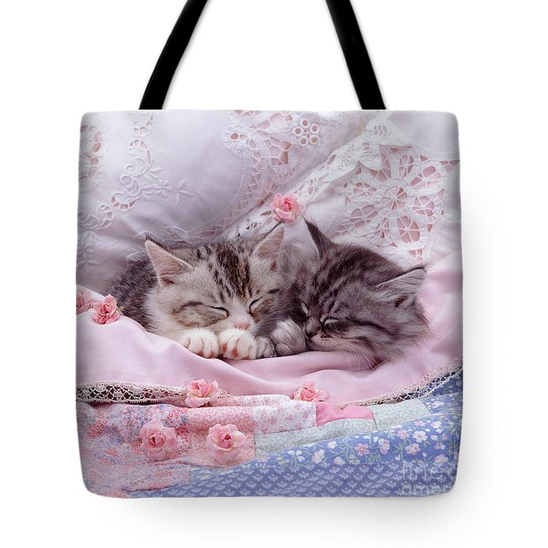 Silver Tabby Kittens Tote Bag by Jane Burton