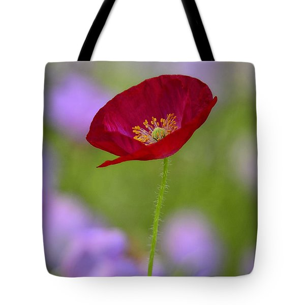 Single Red Poppy  Tote Bag by Saija  Lehtonen