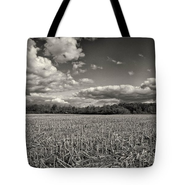 Skyway Tote Bag by Rachel Cohen