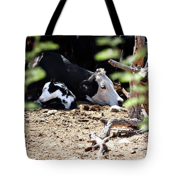 Sleepy Arizona Cows Tote Bag by Methune Hively