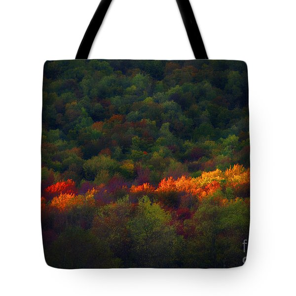 Slice Of Light Evening In Fall Tote Bag by Dan Friend