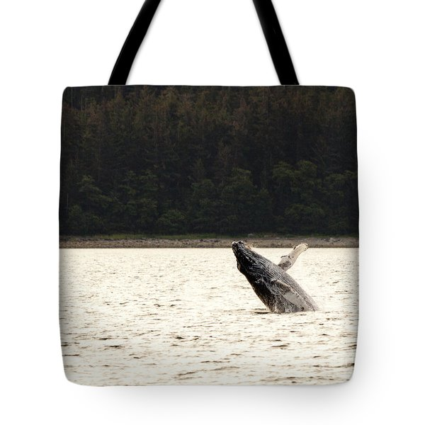 Small Breaching Whale Tote Bag by Darcy Michaelchuk