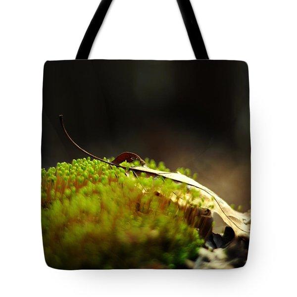 Small World Tote Bag by Rebecca Sherman