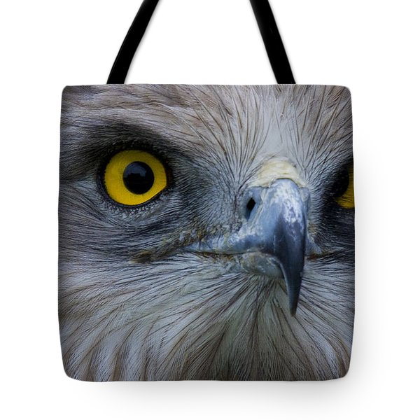 Snake Eagle 2 Tote Bag by Heiko Koehrer-Wagner