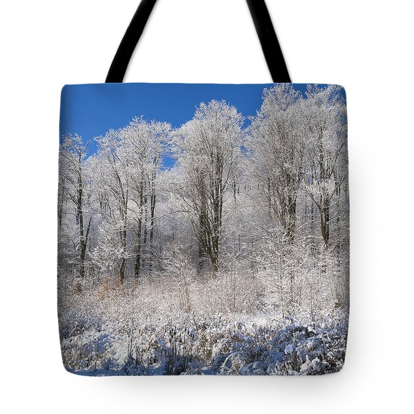 Snow Covered Maple Trees Iron Hill Tote Bag by David Chapman
