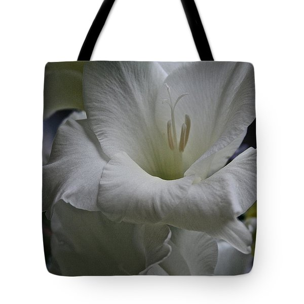Snow White Glads Tote Bag by Susan Herber