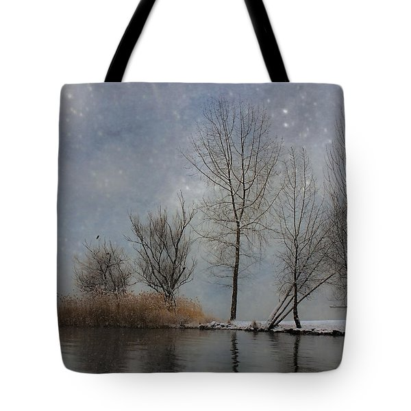 snowfall Tote Bag by Joana Kruse