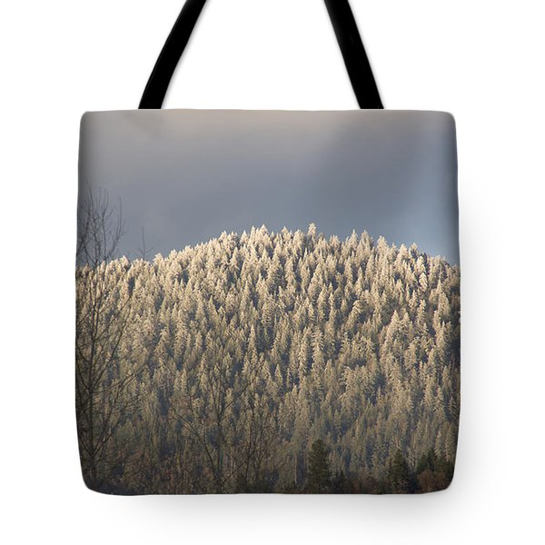 Snowlight Tote Bag by Mick Anderson