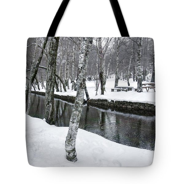 Snowy Park Tote Bag by Carlos Caetano