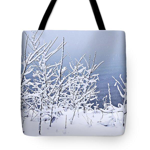 Snowy Trees Tote Bag by Elena Elisseeva