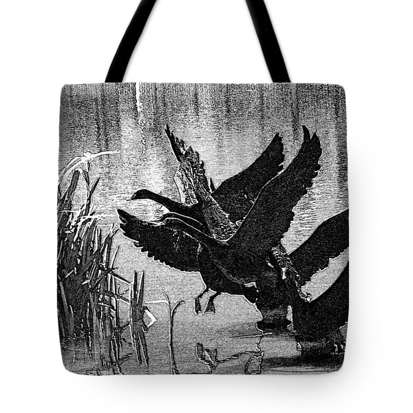 Soft Landings Tote Bag by Lenore Senior