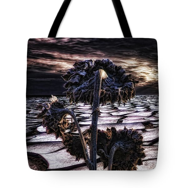 Solitude Tote Bag by Mo T