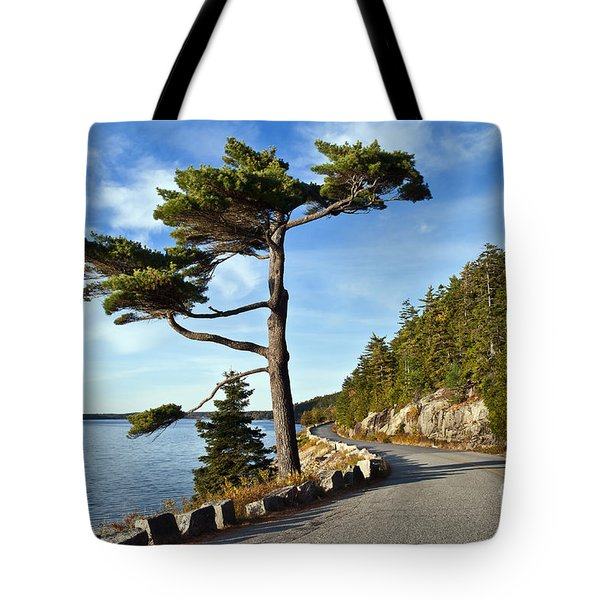 Somes Sound Maine Tote Bag by John Greim