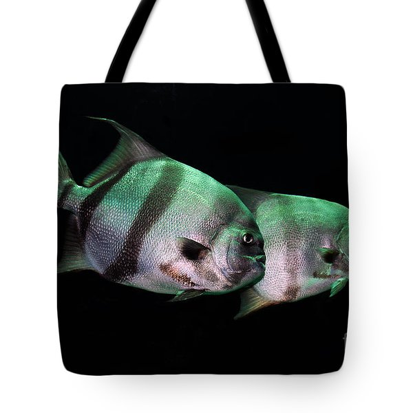Something Fishy This Way Comes Tote Bag by Lois Bryan